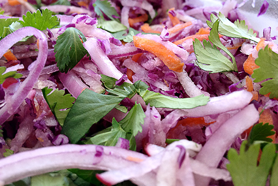 Jicama and Red Onion Slaw