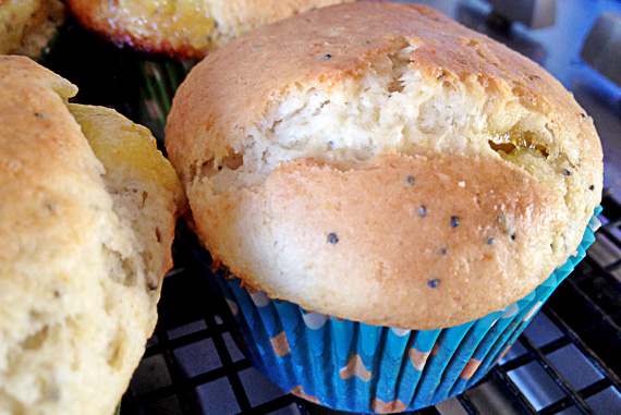 Lemon Poppy Seed Muffins!