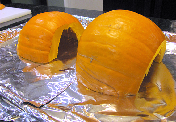 great-pumpkin-experiment-my-imperfect-kitchen-03