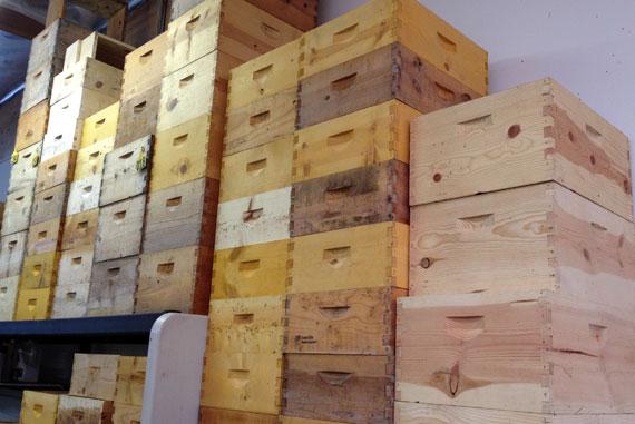 BeeKeepersHives