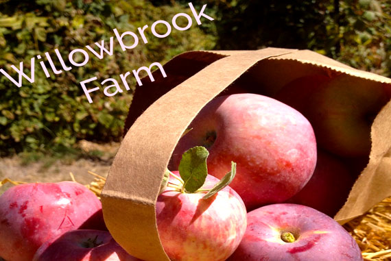 WillowBrookApples