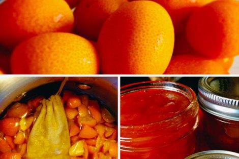 Kumquat4