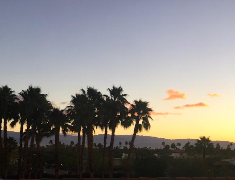 Sunrise Coachella Valley Farm Tour