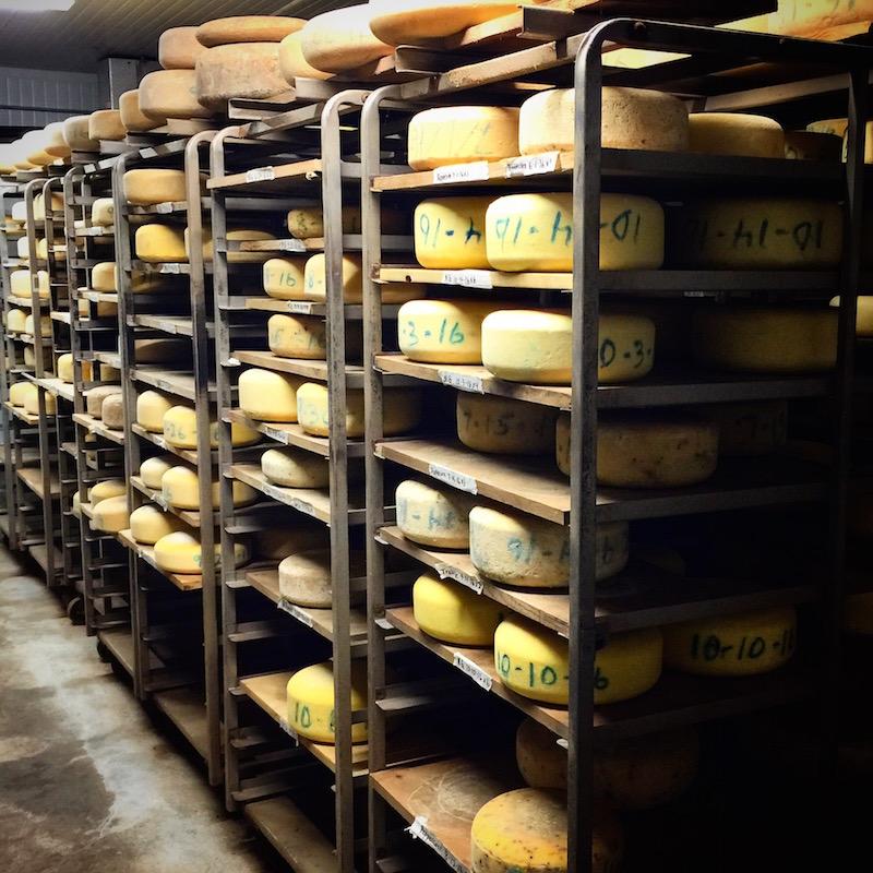 Pedrozo Dairy Cheese Company