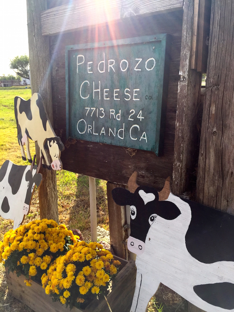Pedrozo Dairy and Cheese