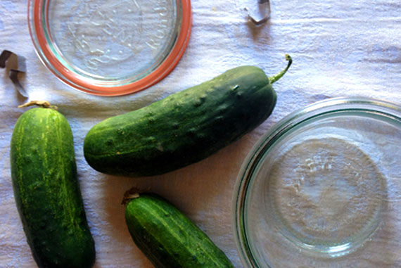 Quick Garlic & Dill Refrigerator Pickles!