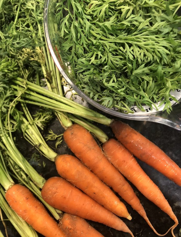 Spicy Vegan Carrot Top Pesto!